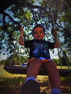 LittleMan Swinging High Prairie