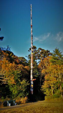 Worlds Tallest Totempole Beacon Hill Park Victoria BC 2