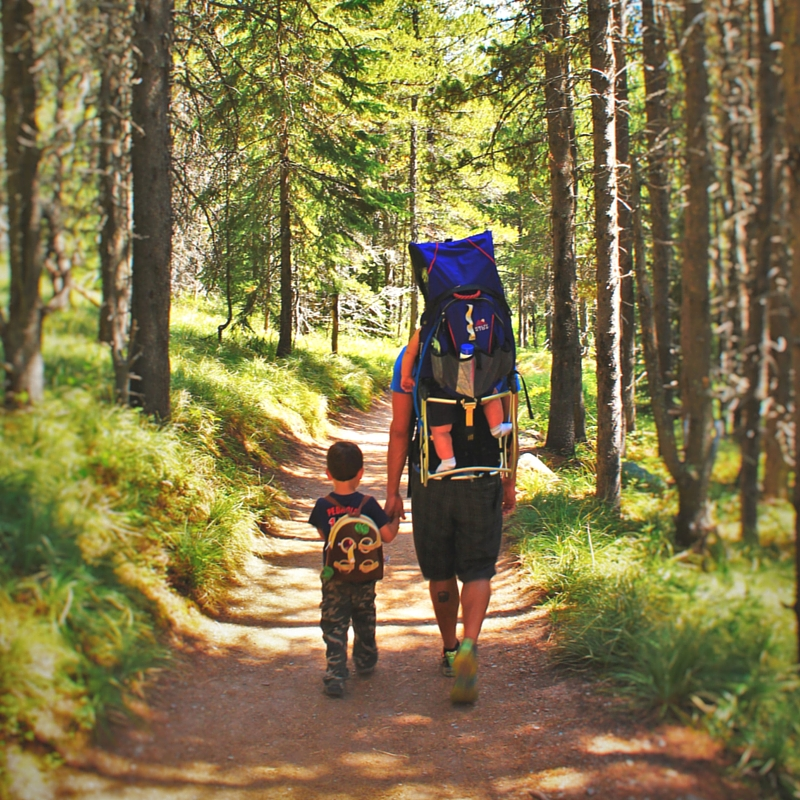 Rob Taylor and Kids hiking in Glacier National Park