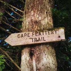 Cape Flattery Trail Sign thumb