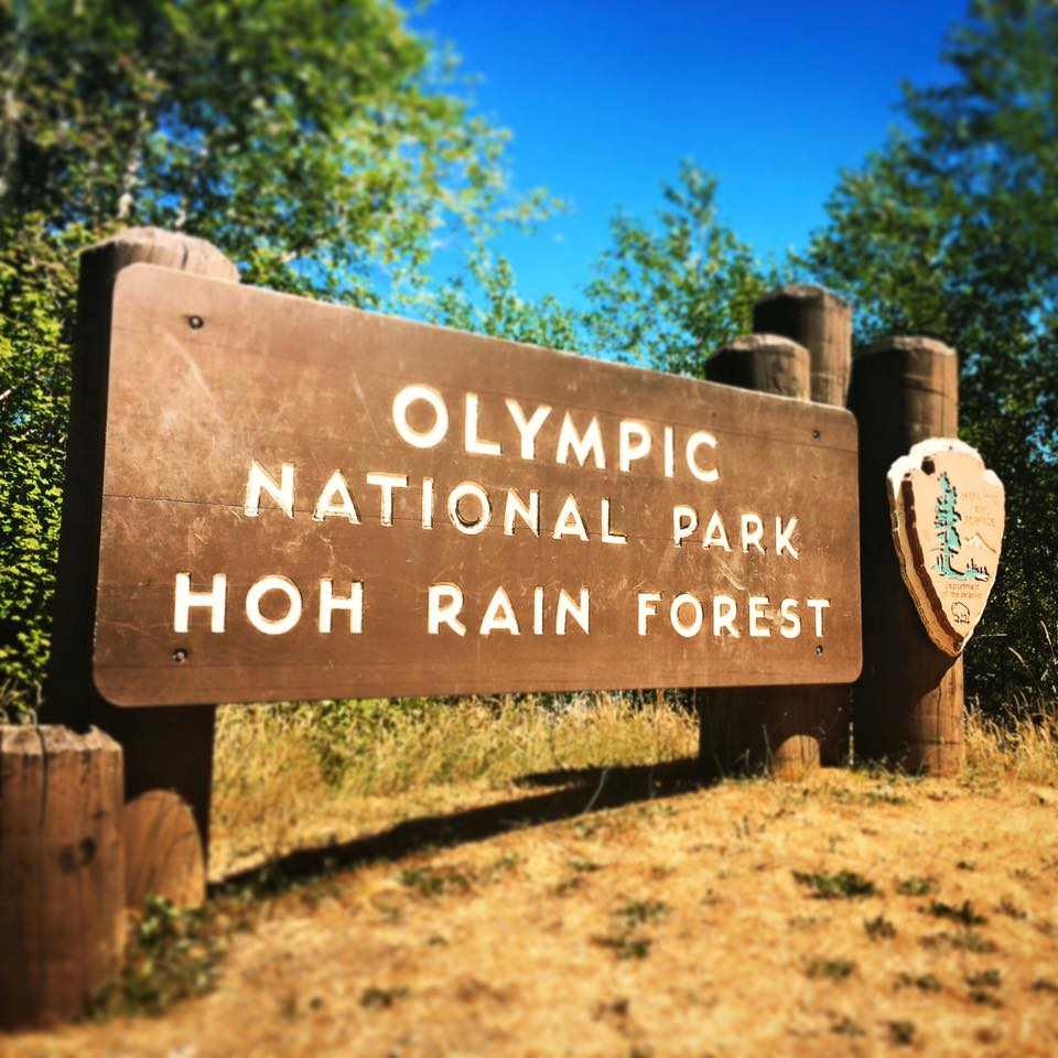 Hoh Rainforest Olympic National Park entrance