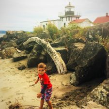 LittleMan Point No Point Lighthouse Beach with Driftwood
