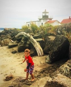 LittleMan Point No Point Lighthouse Beach with Driftwood