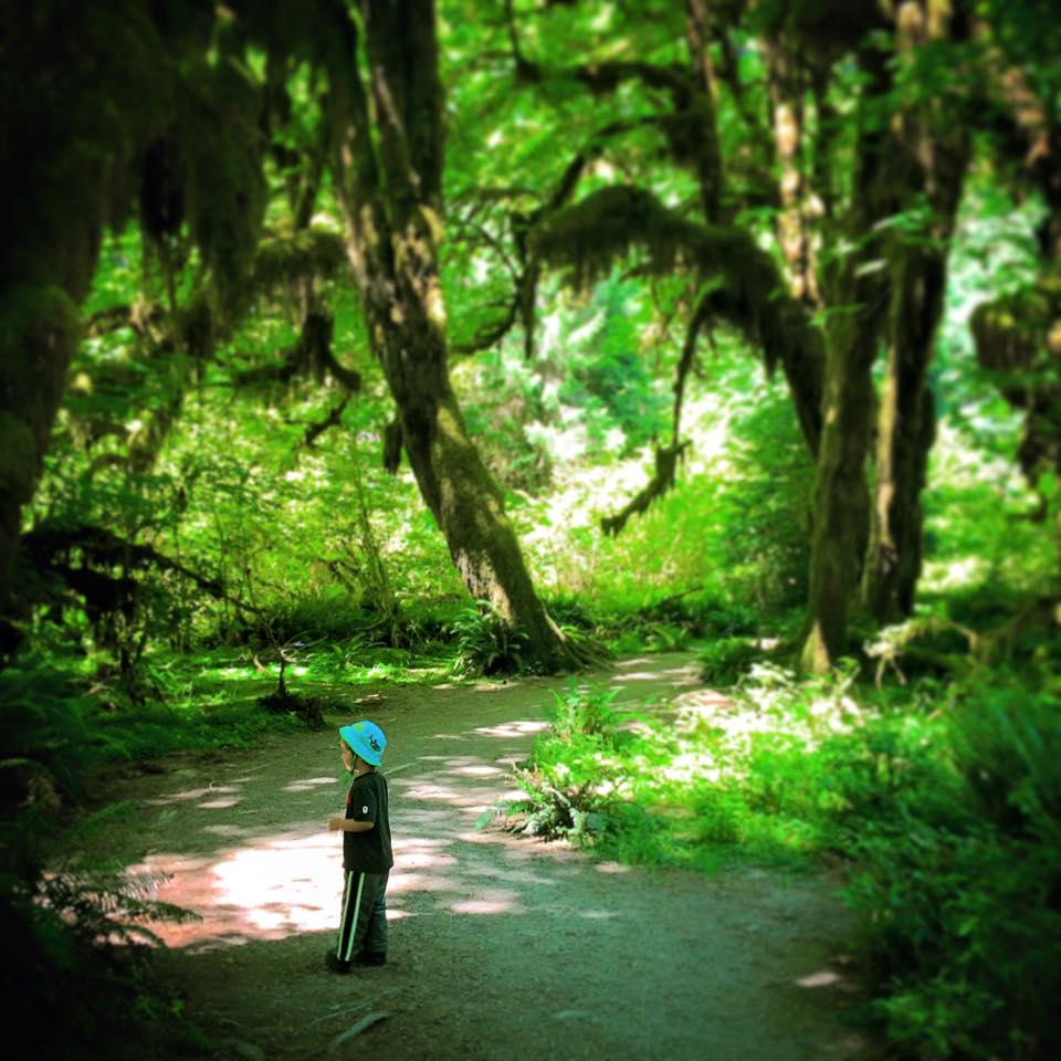 LittleMan at Hoh Rainforest Olympic National Park