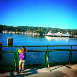 LittleMan on Ferry Eagle Harbor Bainbridge