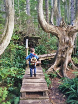 LittleMan on Trail at Cape Flattery Olympic Peninsula 3