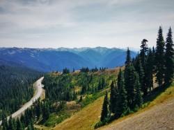 Road to Hurrican Ridge 1