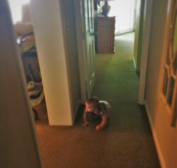 TinyMan Crawling in Hall at King and Prince Resort St Simons GA 2