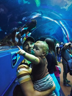 Rob Taylor and TinyMan in Shark Tunnel Georgia Aquarium