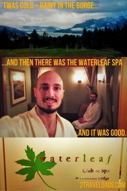 Waterleaf spa pin