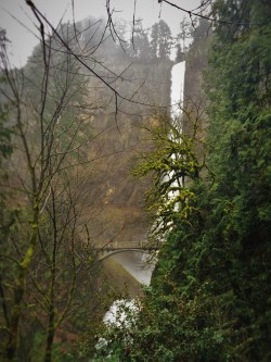 From Trail at Multnomah Falls Oregon 1