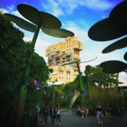 HTH Tower of Terror from Bugland