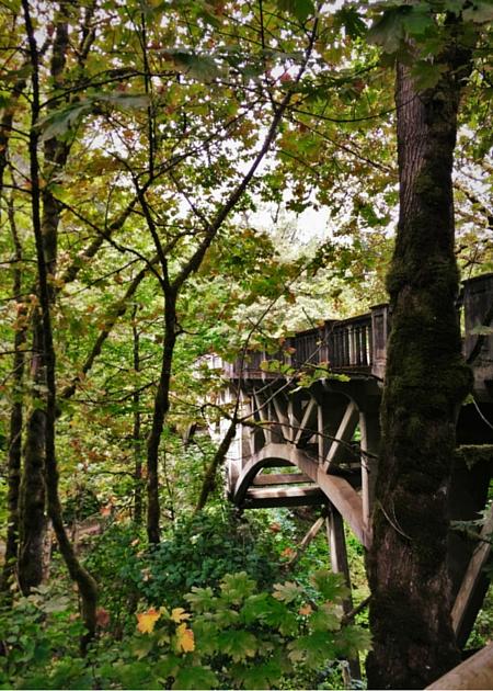 Highway 30 bridge at Latourell Falls Columbia Gorge Waterfall Area Oregon