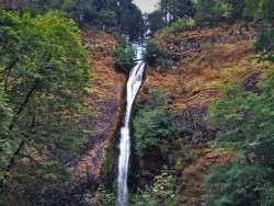 Horsetail Falls in Summer in the Columbia Gorge Oregon