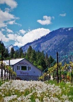 Leavenworth Winery 2traveldads.com