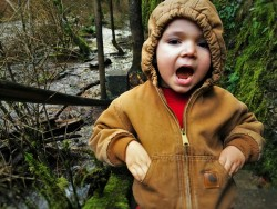 LittleMan and Flooding Creek at Oneonta Gorge Columbia Gorge Oregon