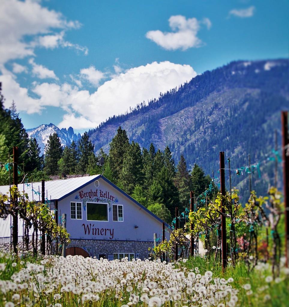 Winery Leavenworth WA 2traveldads.com
