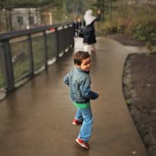 LittleMan Running at Snoqualmie Falls 1