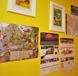 National Parks Maps in LittleMans Bedroom