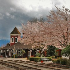 Old-Snoqualmie-Train-Depot-with-Cherry-Blossoms-Washington-10-1-225x225.jpg