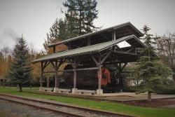 Preserved Cedar Stump Logging Display in Snoqualmie Washington 1