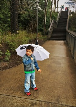 LittleMan and Umbrella at Snoqualmie Falls in Rain 1