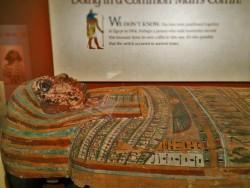 Ancient Mummy Case in Denver Museum of Science and Nature 1