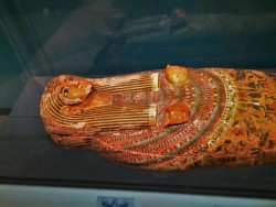 Ancient Mummy Case in Denver Museum of Science and Nature 2
