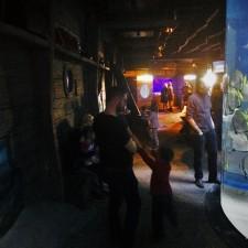 Chris Taylor and Dudes in shipwreck area at Denver Downtown Aquarium 1