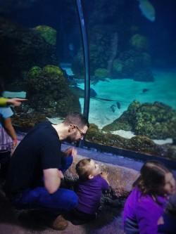 Chris Taylor and TinyMan in Shark Tube at Denver Downtown Aquarium 1
