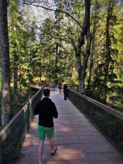 Chris Taylor crossing ravine bridge at Bloedel Reserve Bainbridge Island 1