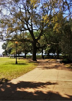 Jacksonville Memorial Riverfront Park 2traveldads.com