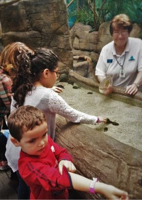 Denver's Downtown Aquarium: cool and