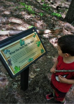 LittleMan at Kennesaw Mountain National Battlefield with nature sign 2traveldads.com