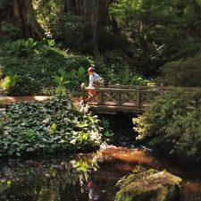 LittleMan on Footbridge at Bloedel Reserve Bainbridge Island 1