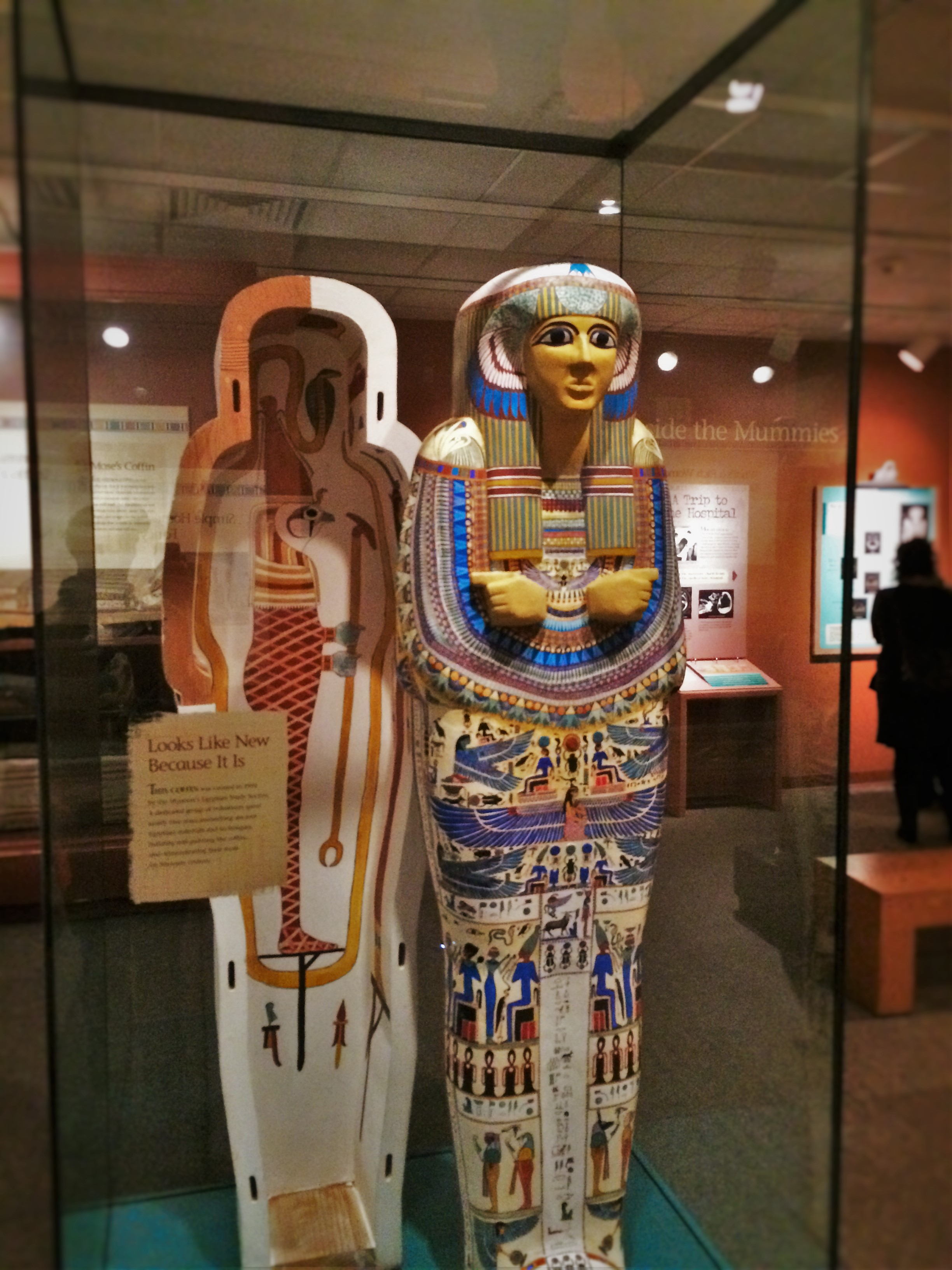 Replica Mummy Case in Denver Museum of Science and Nature
