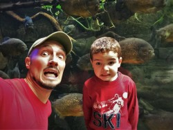 Rob Taylor and LittleMan with Piranhas at Denver Downtown Aquarium 1