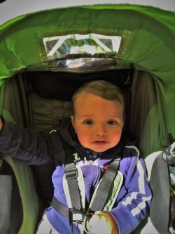 TinyMan in Stroller at Bloedel Reserve Bainbridge Island 1