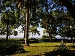 Yoga in Memorial Riverfront Park Avondale Jacksonville Florida 2traveldads.com