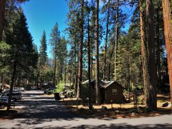 Cabin group at Evergreen Lodge at Yosemite 2traveldads.com