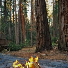 Camp-fire-in-fire-pit-at-Evergreen-Lodge-Yosemite-2traveldads.com_-225x225.jpg