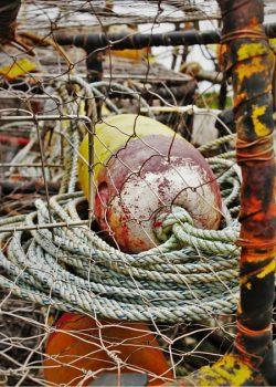 Crabbing pots in Trinidad California 2traveldads.com