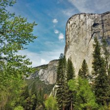 El Capitan from Cathedral Picnic Area in Yosemite National Park 1