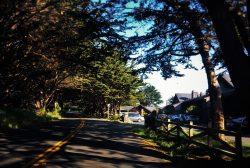 Bodega Bay Lodge exterior 4