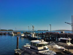 Fishing Pier Marina Bodega Bay