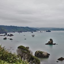 View from Bluff at Trinidad Head
