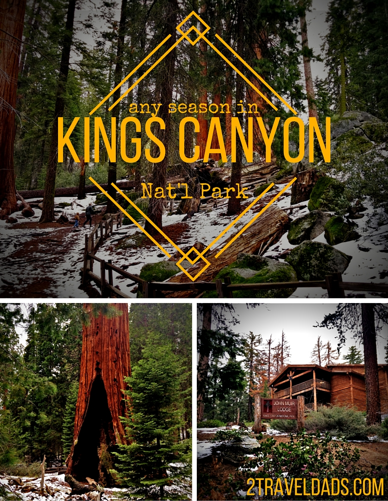 Kings Canyon National Park has some amazing views and giant sequoias everywhere. Check out how to enjoy the Park in any season. 2traveldads.com