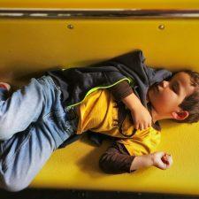 LittleMan asleep on tram tour of Yosemite Valley Floor in Yosemite National Park 1
