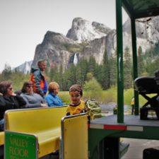 LittleMan on Tram tour in Yosemite National Park 1
