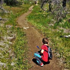 LittleMan using Piggyback Rider at Hetch Hetchy Yosemite National Park 2traveldads.com (1)